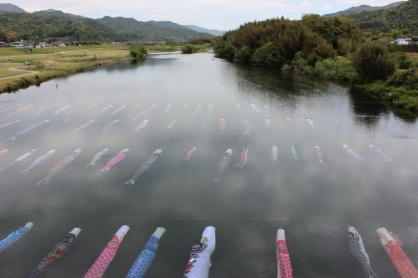 鯉のぼりが泳ぐ清流佐波川の写真