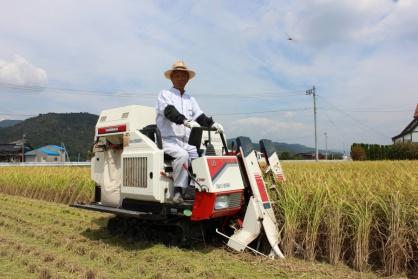 秋・稲刈りの写真