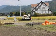 秋・稲刈り2の写真